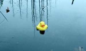 a float