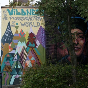 Mural by Meghan Hildebrand and few lady artists from Victoria